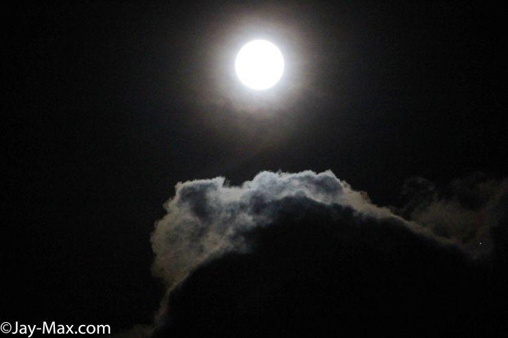 moon glow (14 of 20)