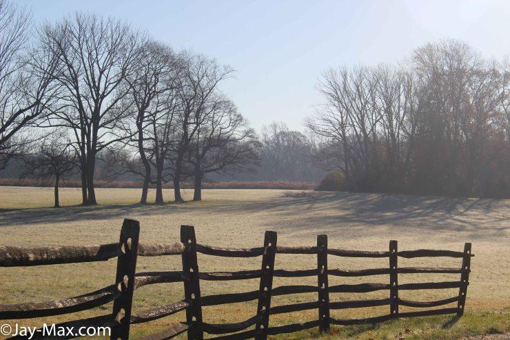 Morning Dew-Field (2 of 4)